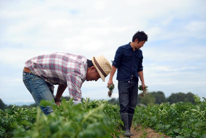 自分たちが本当にうまいと思うものを作りたい。「HAMARA農園」